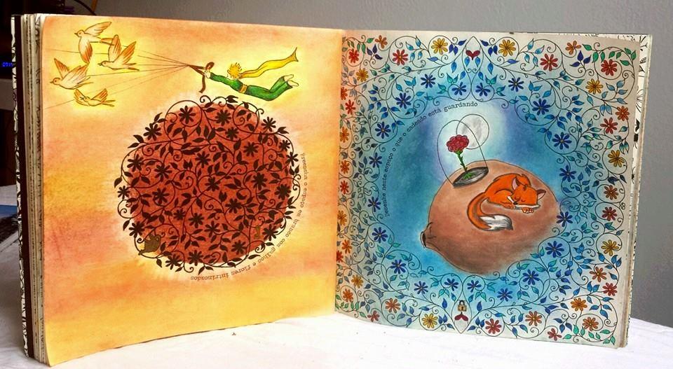 jardim secreto desenhos coloridos 2