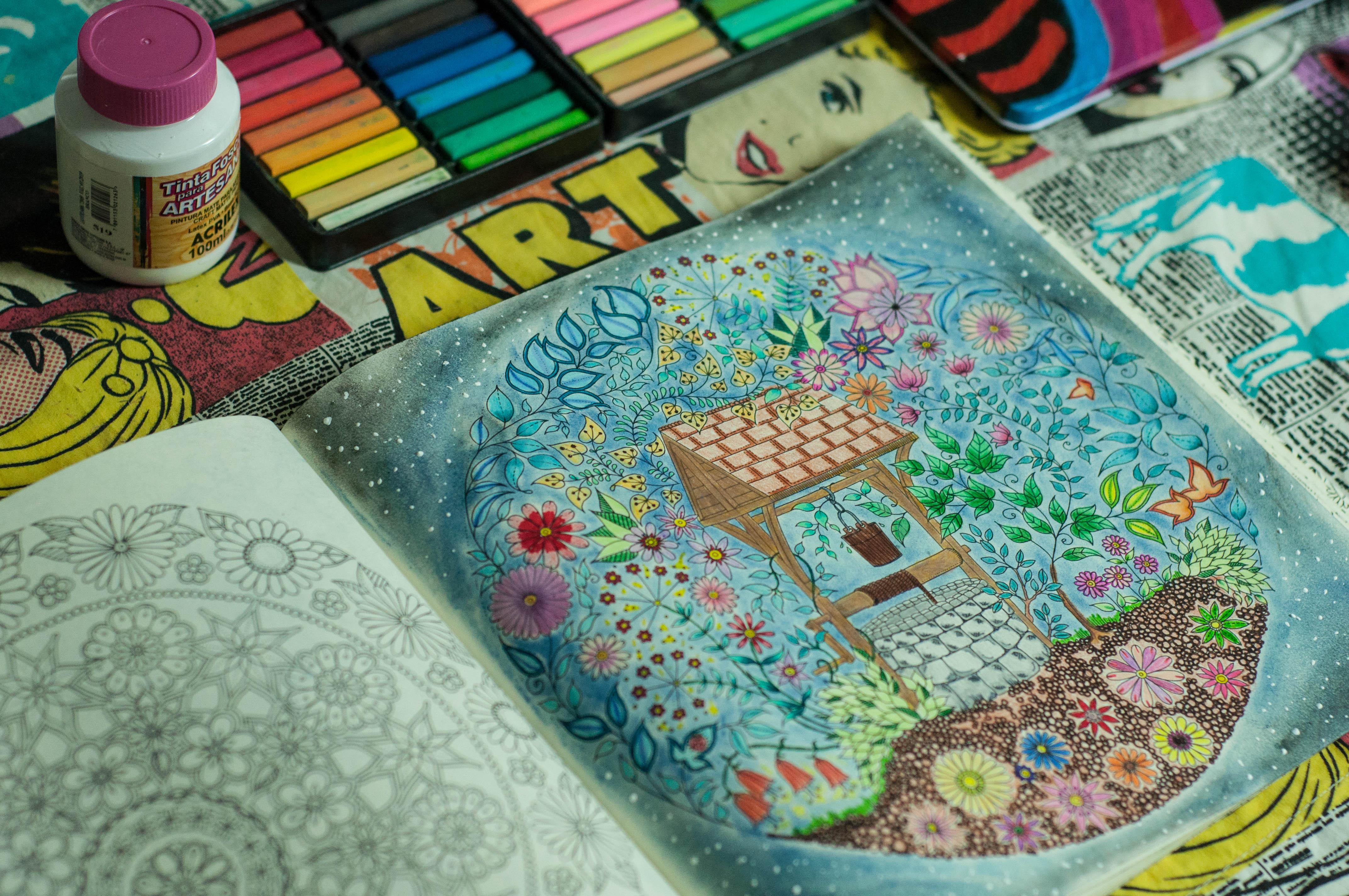 Livros De Colorir Para Desestressar Jardim Secreto E Floresta